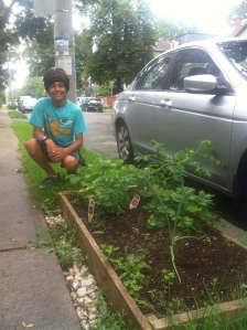My cousin Rhys with his flourishing roadside vegetable garden.