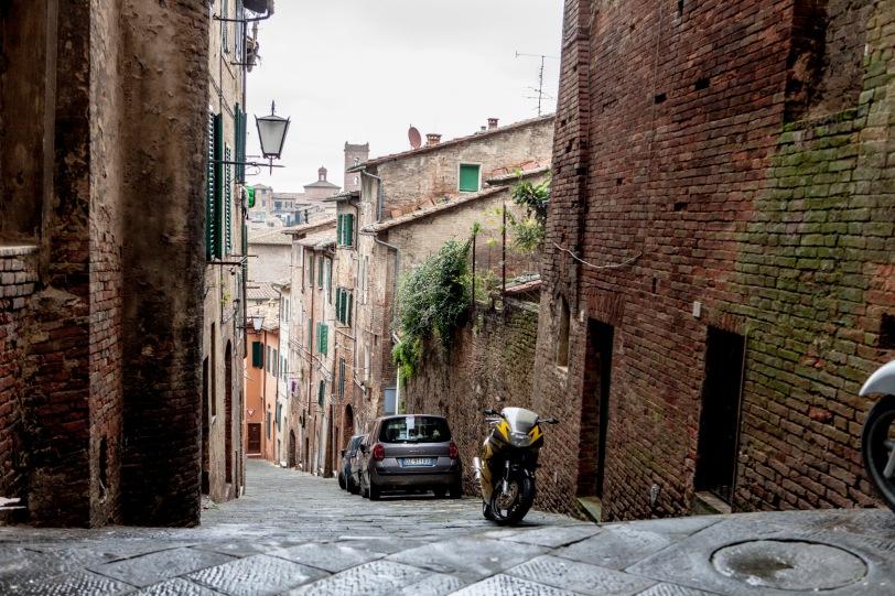 IMG_0254-Siena-pisa