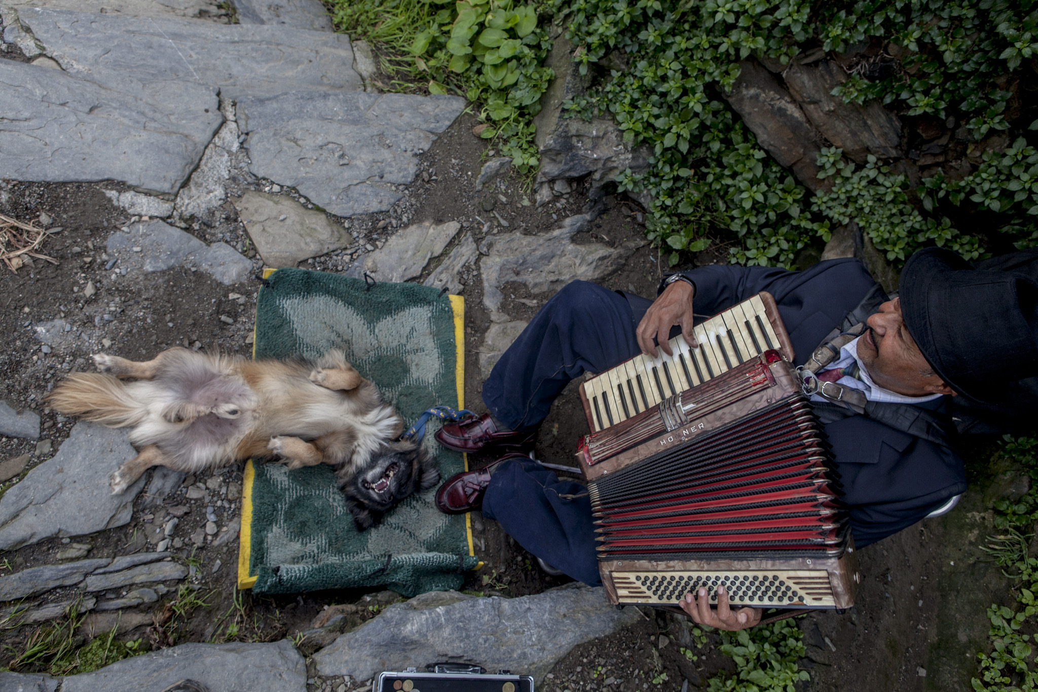 The lilting sounds of an accordion greeted us as we approached Vernazza.